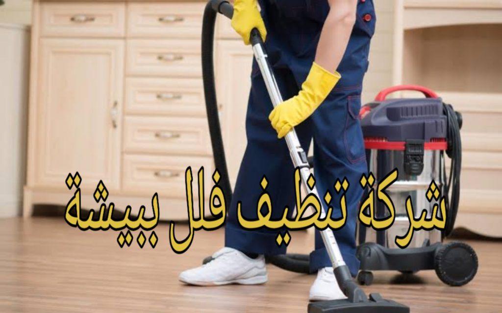شركة تنظيف فلل ببيشة