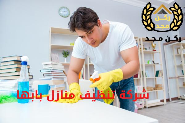 خدمة نظافة منازل بابها